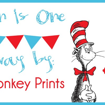 Carsyn's 1st Birthday Bash: Doodle Monkey Printables Giveaway