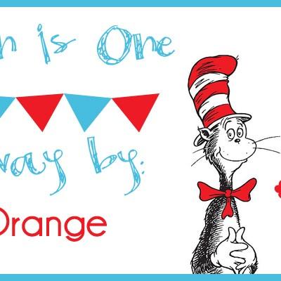 Carsyn's 1st Birthday Bash: Hank Orange Giveaway!
