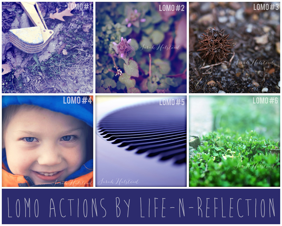 Six Lomo Actions by Life-n-Reflection