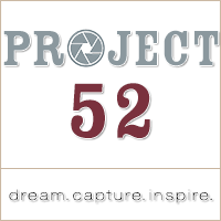 Project 52 BUTTON