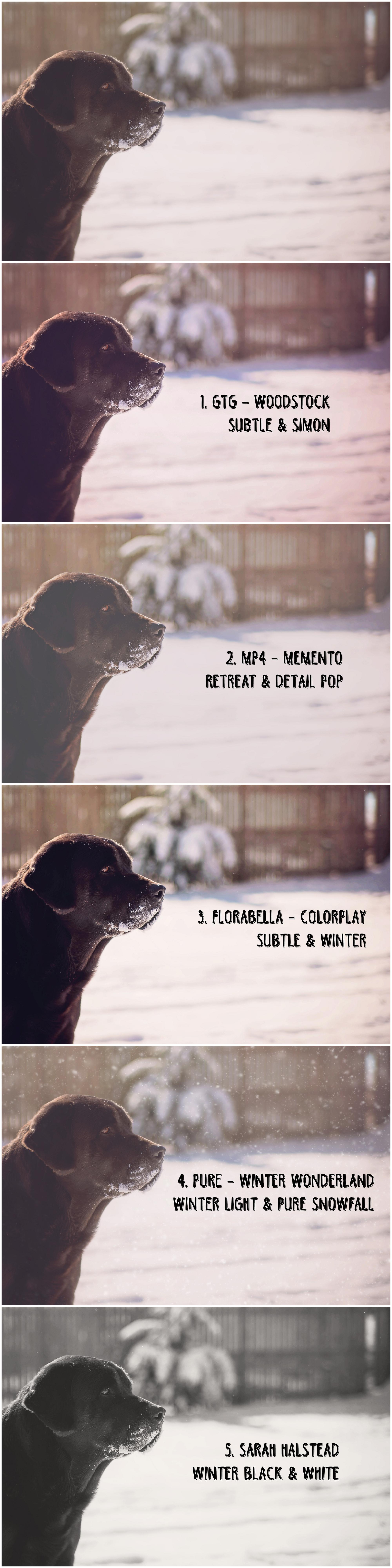 best photoshop actions for winter photos freebies