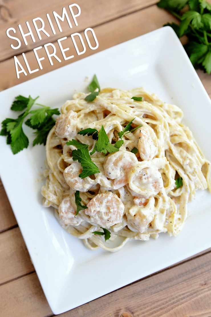 Shrimp-Alfredo