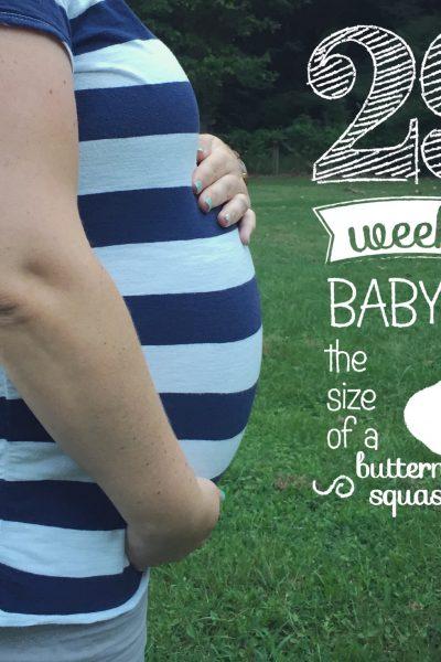 Life of Baby Halstead | Week #29