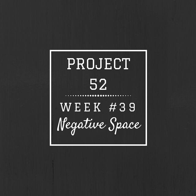 Project52week39
