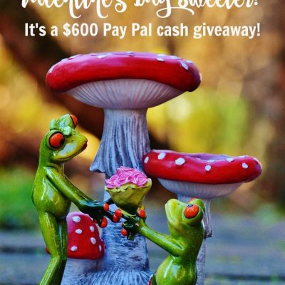$600 Pay Pal Cash Giveaway