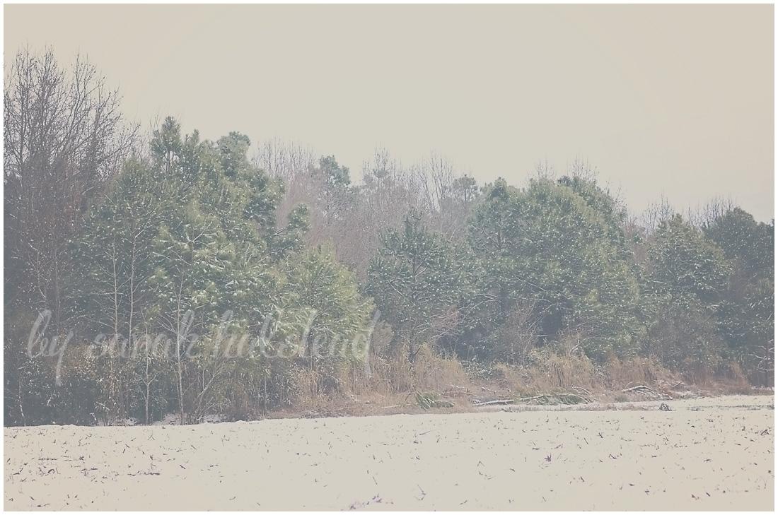 Memories, Dreams and Reflections | Winter Wonderland