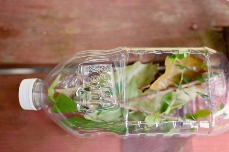 DIY Bug Catcher with Upcycled Juicy Juice Bottle